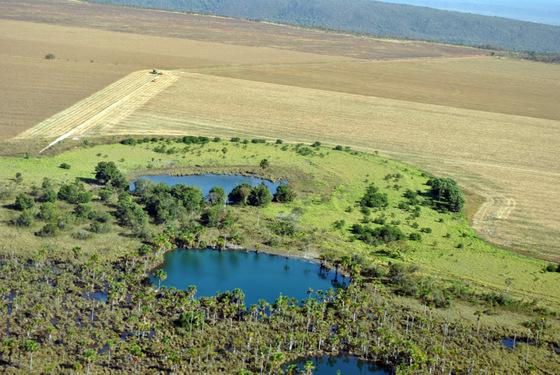 innterior-rio-paraguai-silvio-0011
