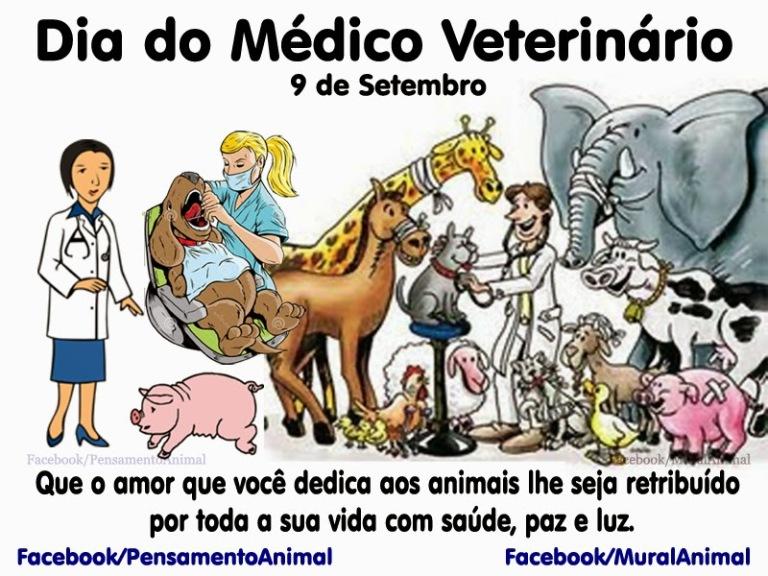 dia_do_veterinario