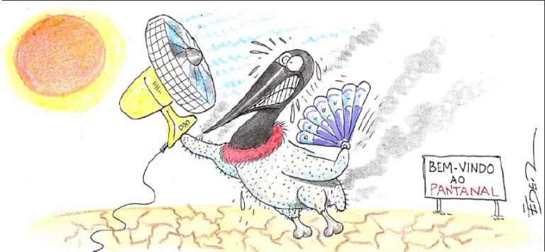 calor-no-pantanal