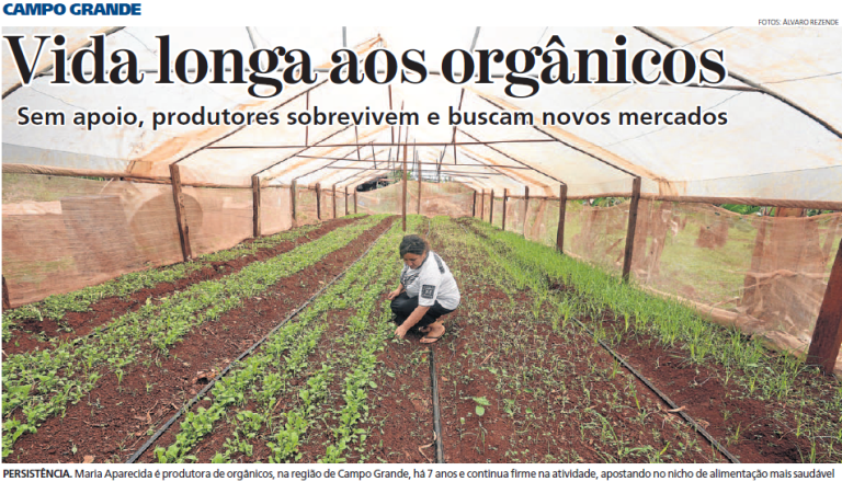 organicos-1