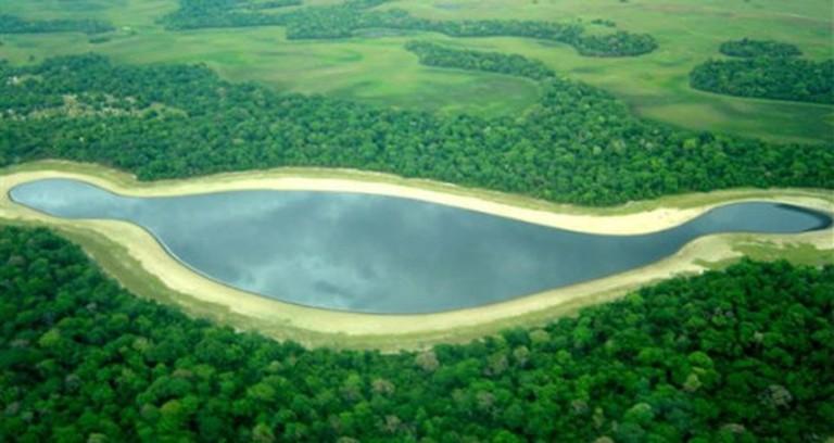 pantanal1