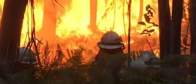 ao-menos-cinco-bombeiros-que-tentavam-combater-as-chamas-ficaram-machuca_HfOgBTs